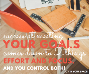 Success at meeting your goals comes down to 2 things: Effort and Focus and you control both!
